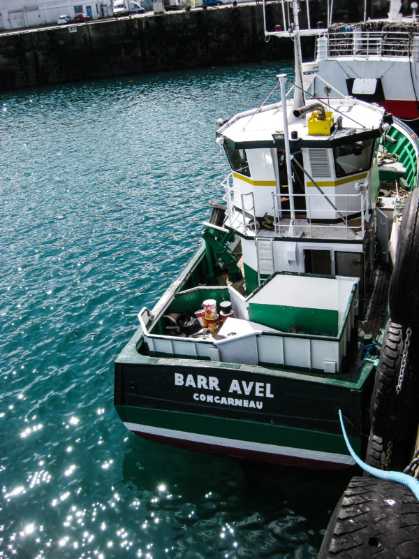 Barr Avel